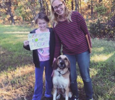 rescue road trips adopted dog homer