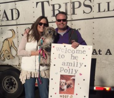 rescue road trips adopted dog polly
